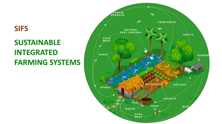 Sustainable Integrated Farming Systems