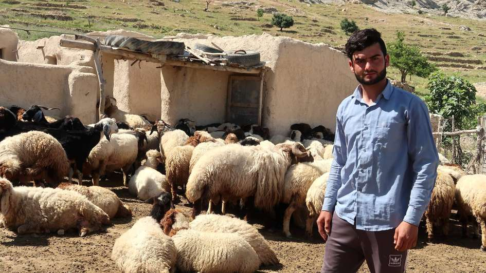 A young shepherd in Sinjar, Iraq