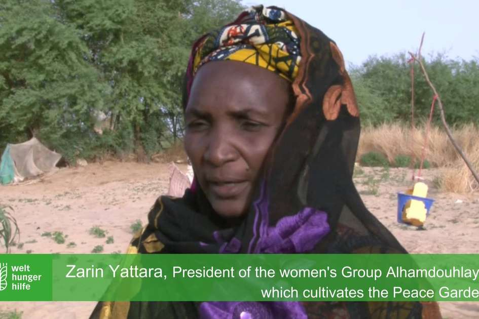 Fleeing the violence of rebel groups in Mali