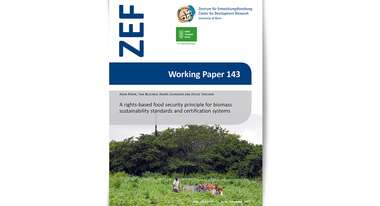 2015-professional-paper-food-based-principle-biomass-zef-welthungerhilfe.jpg
