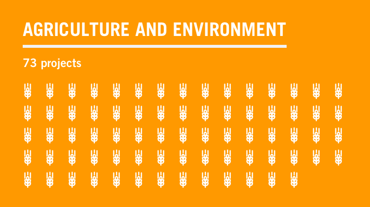 Text graphic: agriculture and environment, 73 projects