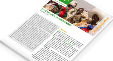 2019-teaser-ebriefs-food-security-in-emergencies.jpg