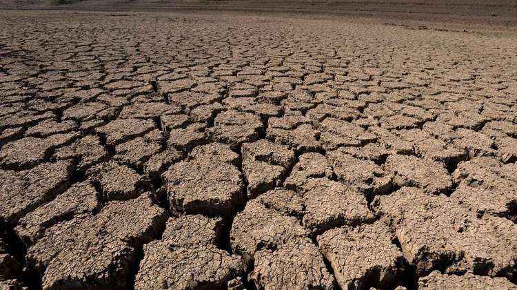 Dürre in Äthiopien, Afar 2016.