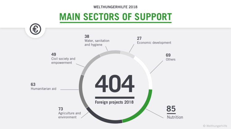 Diagram about foreign projects supported by Welthungerhilfe in 2018.