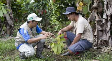 Lucio Bravo and Willy Miguel Sanchez with a cocoa plant.