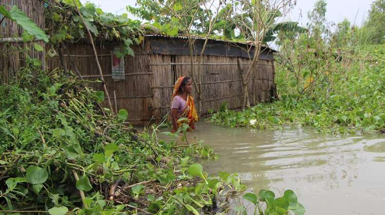 After heavy rainfalls, the Jamuna river in north western Bangladesh rises significantly. For the locals, this often means losing their crops and their homes.