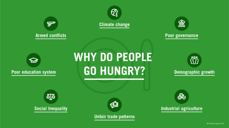 Infographic: Why do people go hungry?