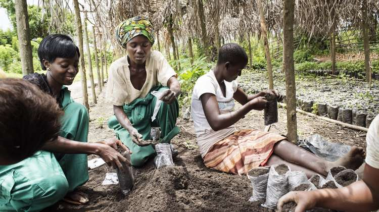 A group of women filling little bags with soil