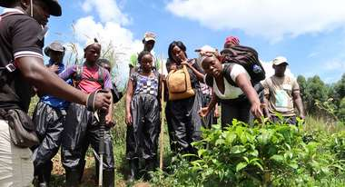 A group of young people stand around a plant, a young woman examines it.