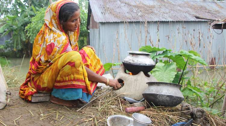 Smallholders like the Begum family are improving their situation in life with flexible gardens and specialised seed.