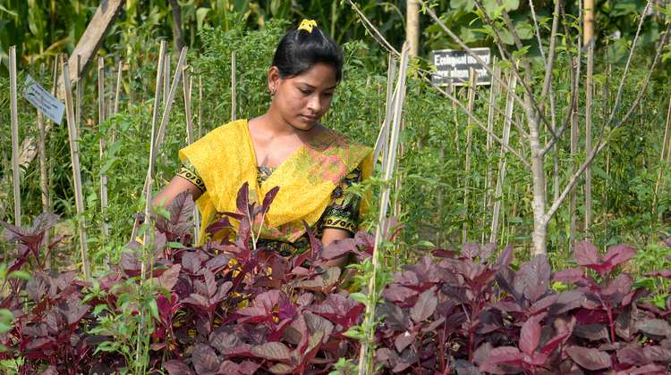 Sharmin Akter working in a garden