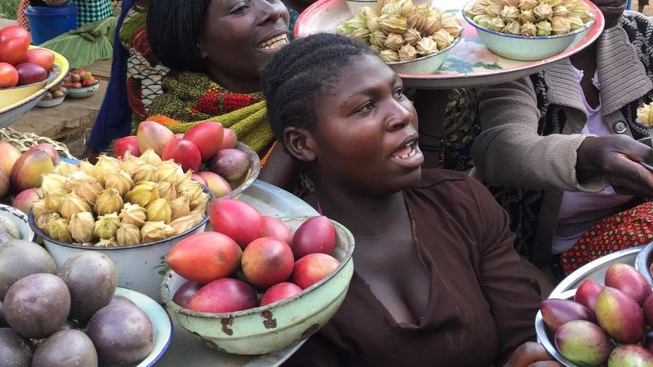 Women offer a rich variety of agricultural products on a farmer's market in northeastern Congo.