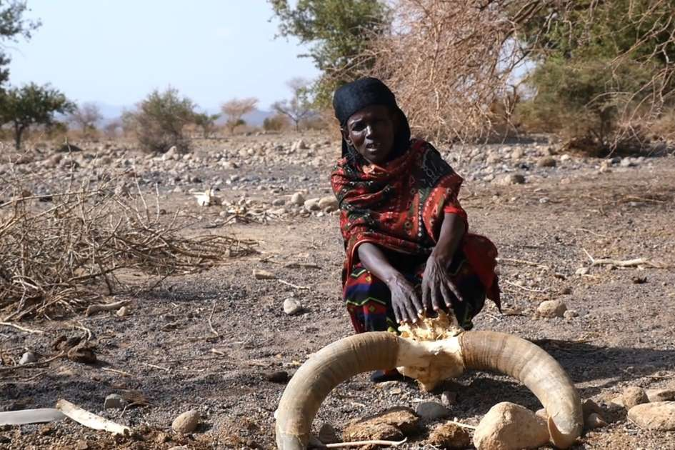 Drought in Ethiopia - El Niño