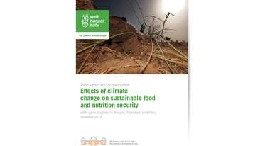 2015-effects-of-climate-change-on-sustainable-food-and-nutrition-security.jpg