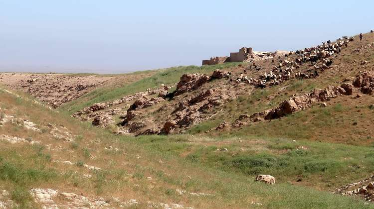 Shepherd village in Sinjar, Nineveh Governorate, Iraq