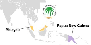Food Security Standard Project in Malaysia and Papua New Guinea: implemented with the partner RSPO.